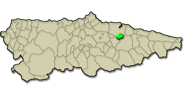 Mapa de situación. Torazo, Premio al Pueblo Ejemplar de Asturias 2008
