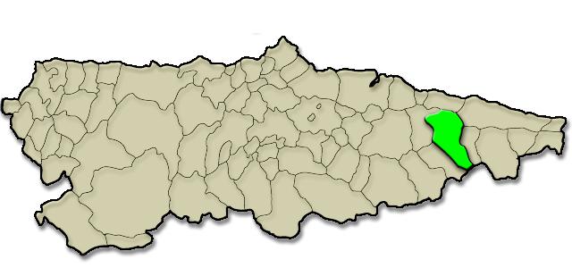Situación municipio de Cangas de Onís