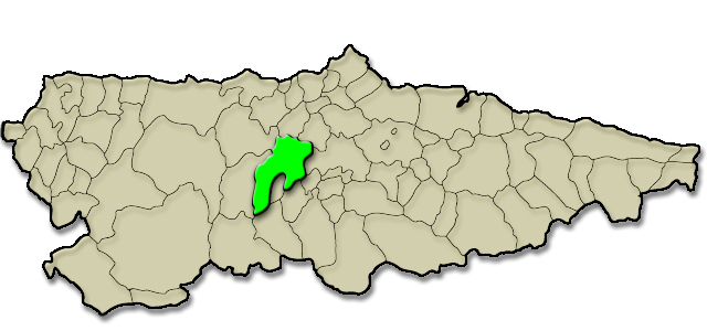 Mapa de situación. Vio del Pico