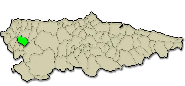 Situación municipio de Illano