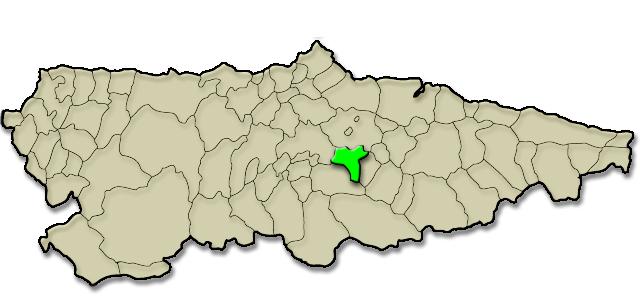 Situación municipio de Langreo