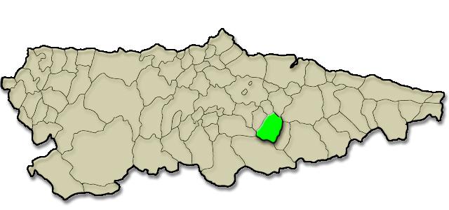 Situación municipio de Laviana