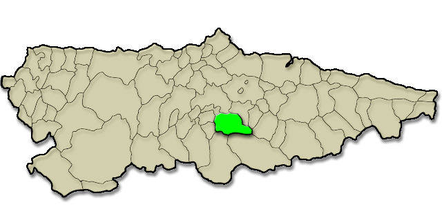 Situación municipio de Mieres