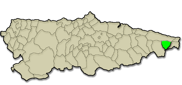 Mapa de situación. Ruenes