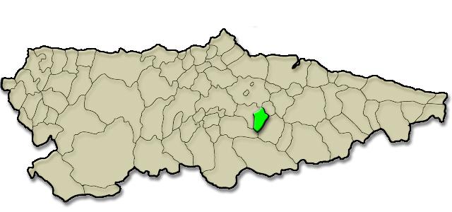 Situación municipio de San Martín del Rey Aurelio