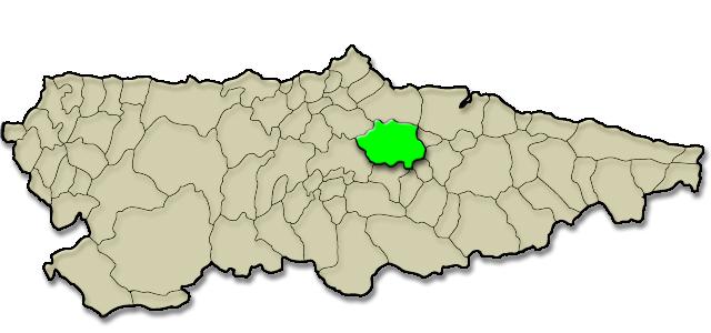 Mapa de situación. Pensión Cangas de Onís