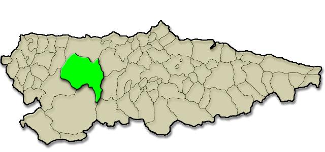 Situación municipio de Tineo